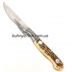 """C-901 Нож Хортица 4"""""""